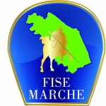 Profile picture of Redazione Community FISE Mache
